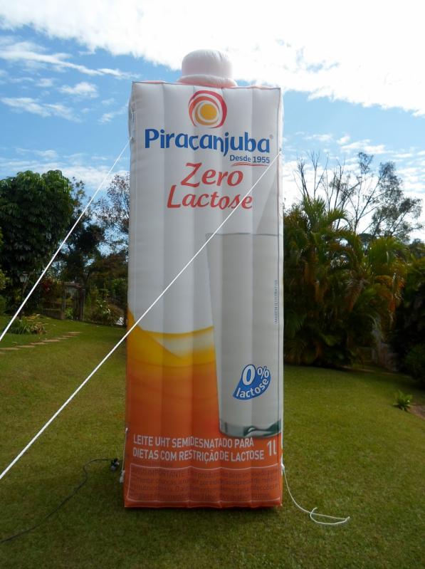 Fabricante de Infláveis Promocionais em Alagoas - AL - Maceió - Bolas Promocionais